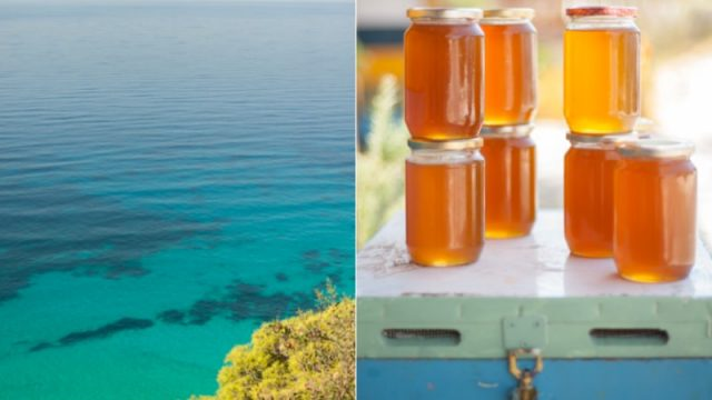 Bloggers love Lefkada: The island is a bee pardise, the honey is sublime